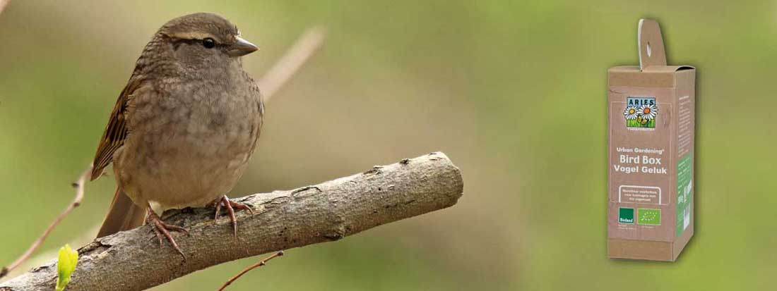 Bird Seed Box met bio vogelvoer